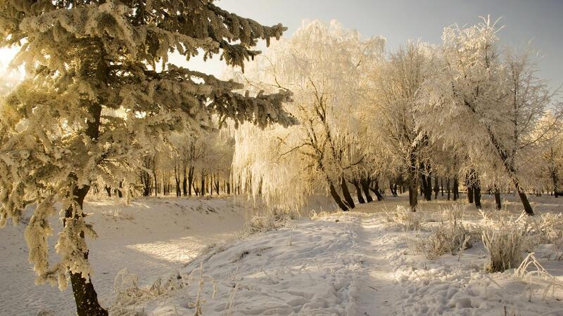 Кращі фотошпалери - Зима - Новий рік - на робочий стіл Природа, Кращі фотошпалери зими на робочий стіл, Шпалери для робочого столу, Зима, Ліси, Захід Сонця, Схід Сонця id1667071395