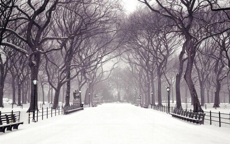 Кращі фотошпалери зими на робочий стіл / частина 2 Природа, Кращі фотошпалери зими на робочий стіл, Шпалери для робочого столу, Зима, Ліси, Захід Сонця, Схід Сонця id269601717