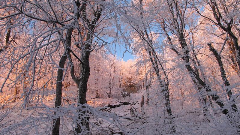 Кращі фотошпалери зими на робочий стіл / частина 2 Природа, Кращі фотошпалери зими на робочий стіл, Шпалери для робочого столу, Зима, Ліси, Захід Сонця, Схід Сонця id104344956