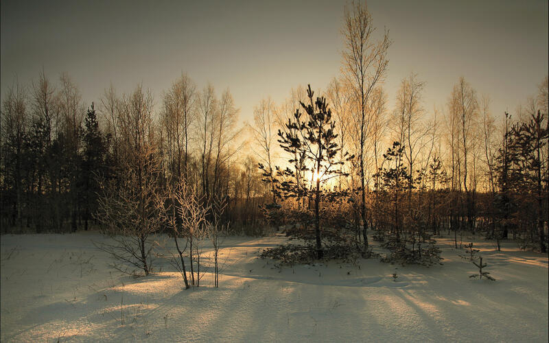 Кращі фотошпалери зими на робочий стіл / частина 2 Природа, Кращі фотошпалери зими на робочий стіл, Шпалери для робочого столу, Зима, Ліси, Захід Сонця, Схід Сонця id1897922909