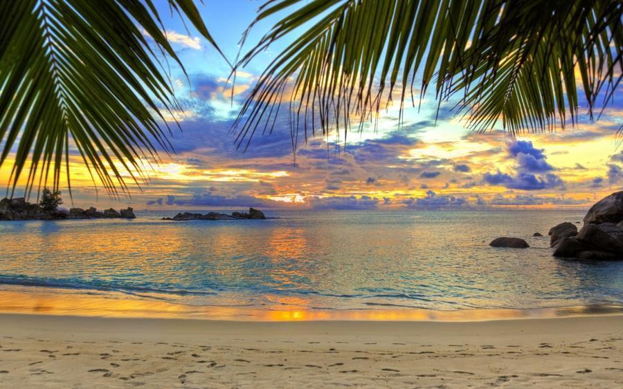 Шпалери Дивовижних островів Природа, Острови, Пальми, Захід Сонця, Схід Сонця, Берег 938086931