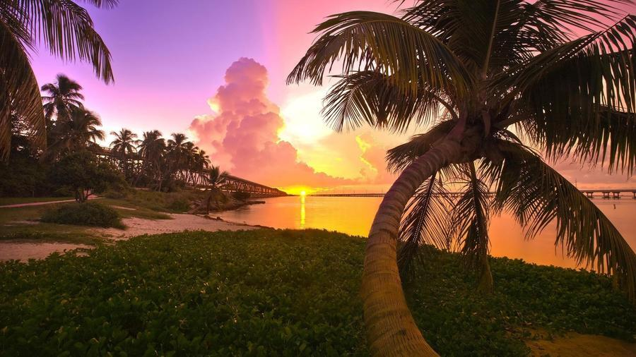 Шпалери Дивовижних островів Природа, Острови, Пальми, Захід Сонця, Схід Сонця, Берег 589627638
