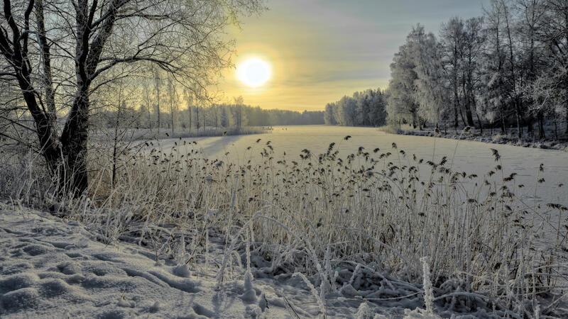 The best winter wallpaper on your desktop / part 2 Природа, The best winter wallpaper on your desktop, Desktop Wallpapers, Winter, Forests, Sunset, Sunrise id1820784649