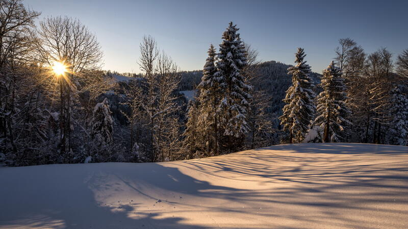 The best winter wallpaper on your desktop / part 2 Природа, The best winter wallpaper on your desktop, Desktop Wallpapers, Winter, Forests, Sunset, Sunrise id1325115067