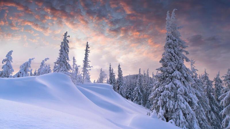 The best winter wallpaper on your desktop / part 2 Природа, The best winter wallpaper on your desktop, Desktop Wallpapers, Winter, Forests, Sunset, Sunrise id290752475