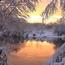 Уникальные обои Зимних лесов Природа, Зима, Лес, Закаты, Восходы 1610067007