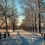 The best winter wallpaper on your desktop / part 2 Природа, The best winter wallpaper on your desktop, Desktop Wallpapers, Winter, Forests, Sunset, Sunrise id832952502