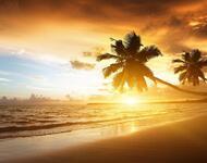 Обои Удивительных островов Природа, Острова, Пальмы, Закат, Восход, Берег, Корабль, Ночь, Луна id852751899
