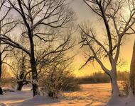 Кращі фотошпалери - Зима - Новий рік - на робочий стіл Природа, Кращі фотошпалери зими на робочий стіл, Шпалери для робочого столу, Зима, Ліси, Захід Сонця, Схід Сонця id222033829