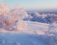Кращі фотошпалери - Зима - Новий рік - на робочий стіл Природа, Кращі фотошпалери зими на робочий стіл, Шпалери для робочого столу, Зима, Ліси, Захід Сонця, Схід Сонця id522584981