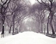 Кращі фотошпалери зими на робочий стіл / частина 2 Природа, Кращі фотошпалери зими на робочий стіл, Шпалери для робочого столу, Зима, Ліси, Захід Сонця, Схід Сонця id1710494309