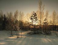 Кращі фотошпалери зими на робочий стіл / частина 2 Природа, Кращі фотошпалери зими на робочий стіл, Шпалери для робочого столу, Зима, Ліси, Захід Сонця, Схід Сонця id1084360976
