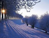 Кращі фотошпалери зими на робочий стіл / частина 2 Природа, Кращі фотошпалери зими на робочий стіл, Шпалери для робочого столу, Зима, Ліси, Захід Сонця, Схід Сонця id1998852899