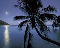 Обои Удивительных островов Природа, Острова, Пальмы, Закат, Восход, Берег, Корабль, Ночь, Луна id1656511763