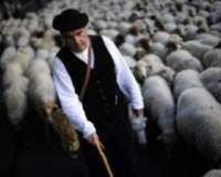 Однажды, пастух обидел одного человека, а тот..
